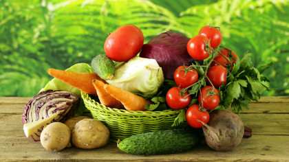 Nutrition and Real Estate Merge with the Rise of the Agrihood | by Addie Hall